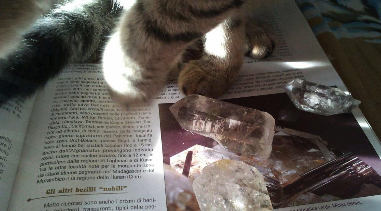 Pietre e Cristalloterapia: Adesso che faccio